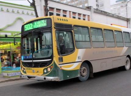 Omnibus, ¿un servicio inviable?