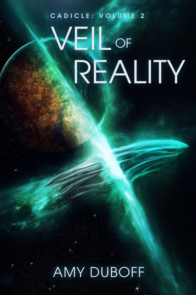 Veil of Reality cover (small)