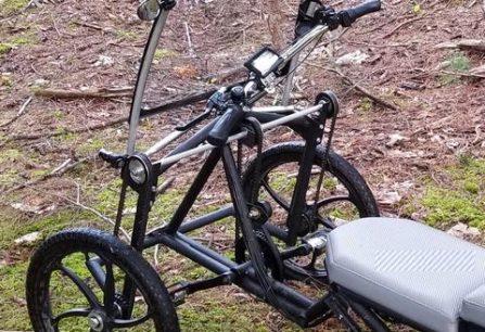 screecher electric pedal car