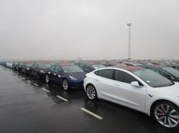Tesla Model 3 zeebruge port 4
