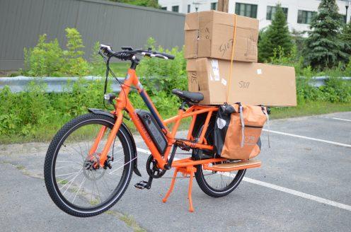 radwagon electric cargo bike