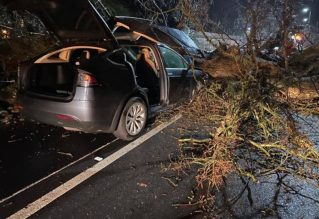 Tesla Model X tree accident 2