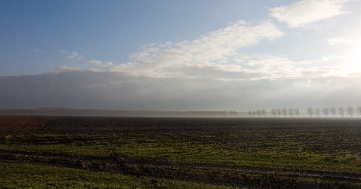 EGEB: A Dutch pilot project will combine solar and strip farming