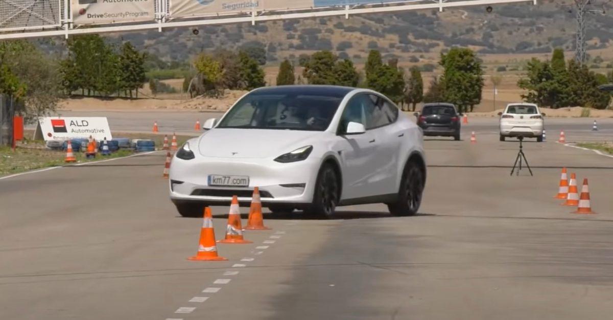 Tesla Model Y impresses in 'moose test'