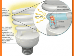 What is CFL – How it Works, Circuit Explanation, Advantages & Disadvantages
