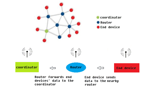 Zigbee Network Node Types