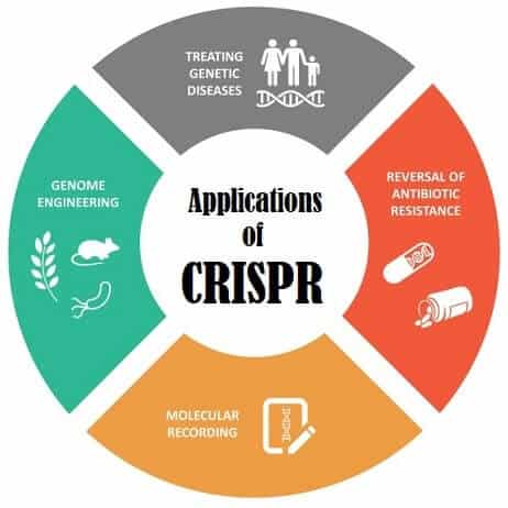 Key Applications of CRISPR