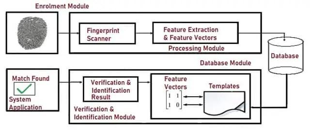 Architecture of Fingerprint Recognition