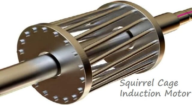 Squirrel Cage Induction Motor