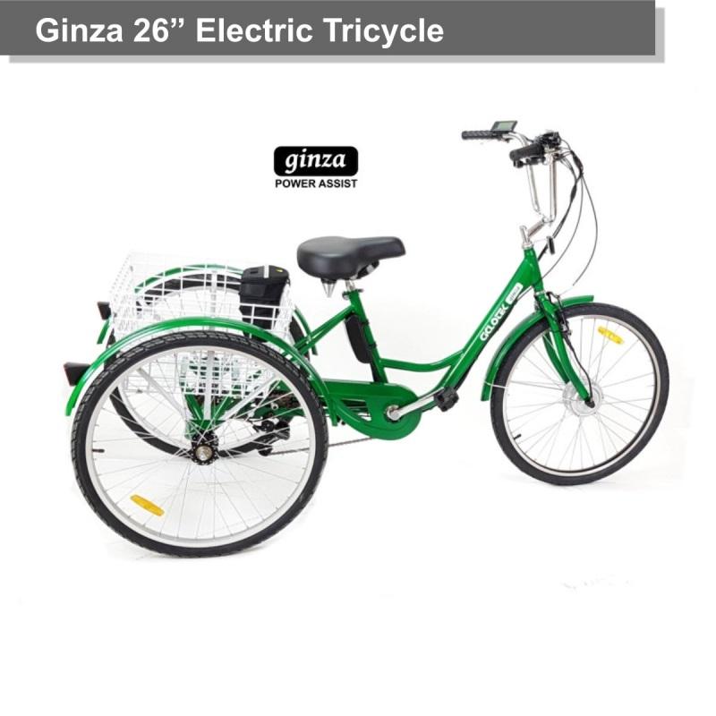 Triciclo Eléctrico Ginza