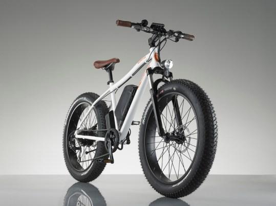 RadRover fat electric bike