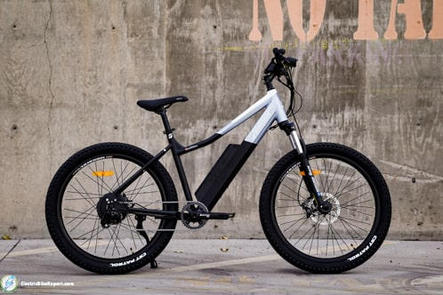 Surface 604 Hardtail EMTB