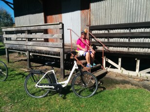 Chilling at the barn