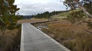 The long boardwalk at Horeke