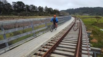 Long bridge at Taumarere