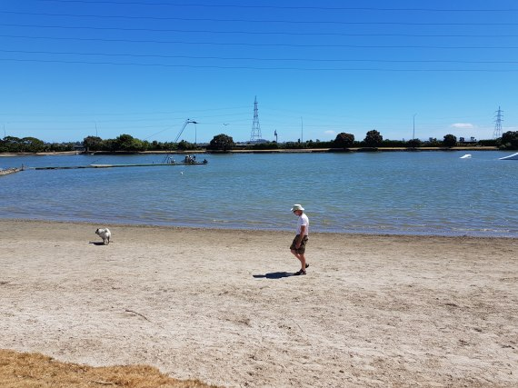 Onehunga Bay Reserve with its wakeboarding facility
