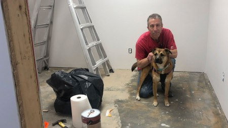 Nina helping with office renovation