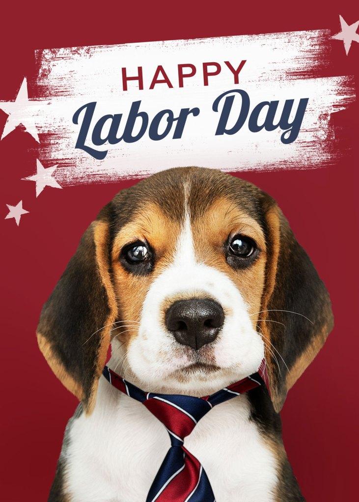 Happy Labor Day puppy