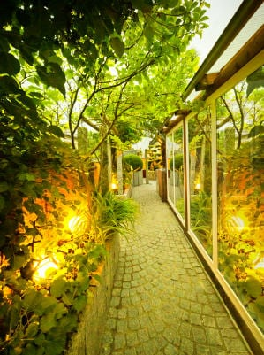 Santa Barbara Landscape Lighting - Private Garden
