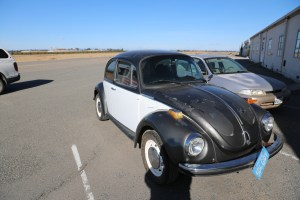 VW Bug (SOLD)
