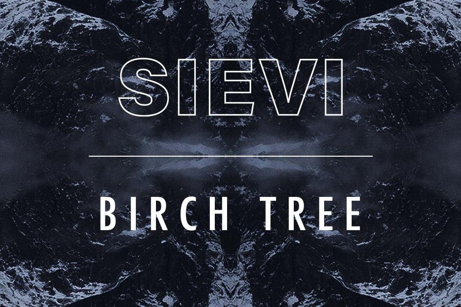 Sieve – Birch Tree