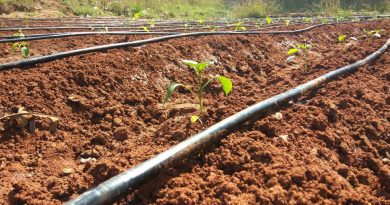 smart irrigation system project