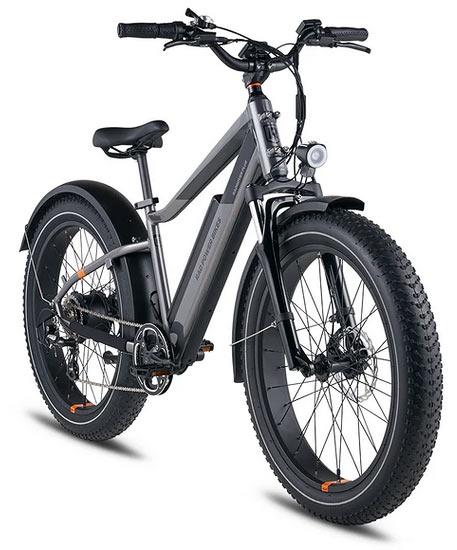 Electric Fat Bike RadRover 6 Plus