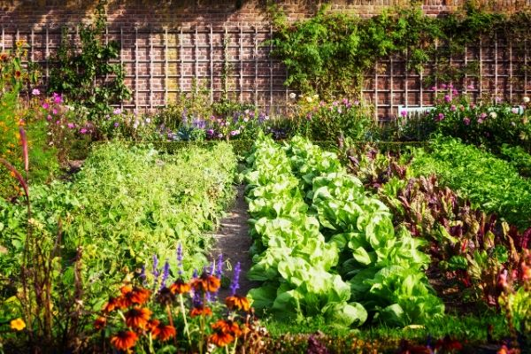 Préserver son jardin sans efforts