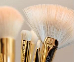 Sonia Kashuk Makeup Brush Review
