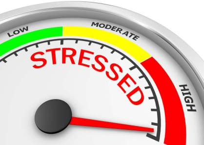 Stress levels are off the charts!