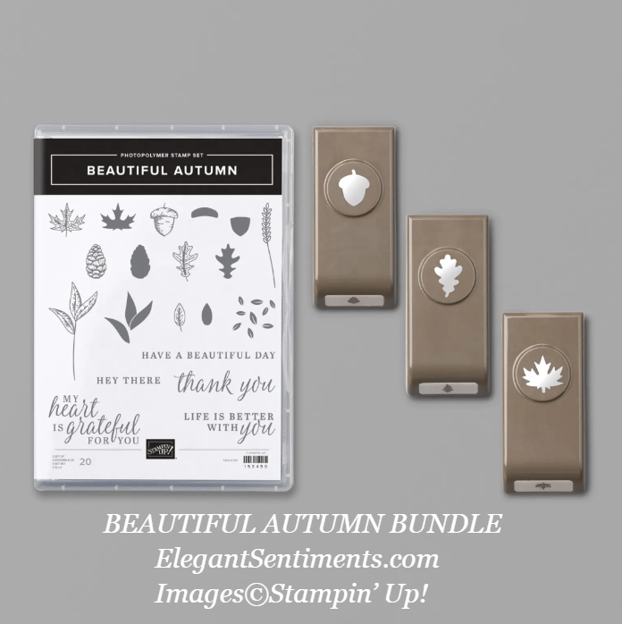 Beautiful Autumn stamp set and punches by Stampin' Up!