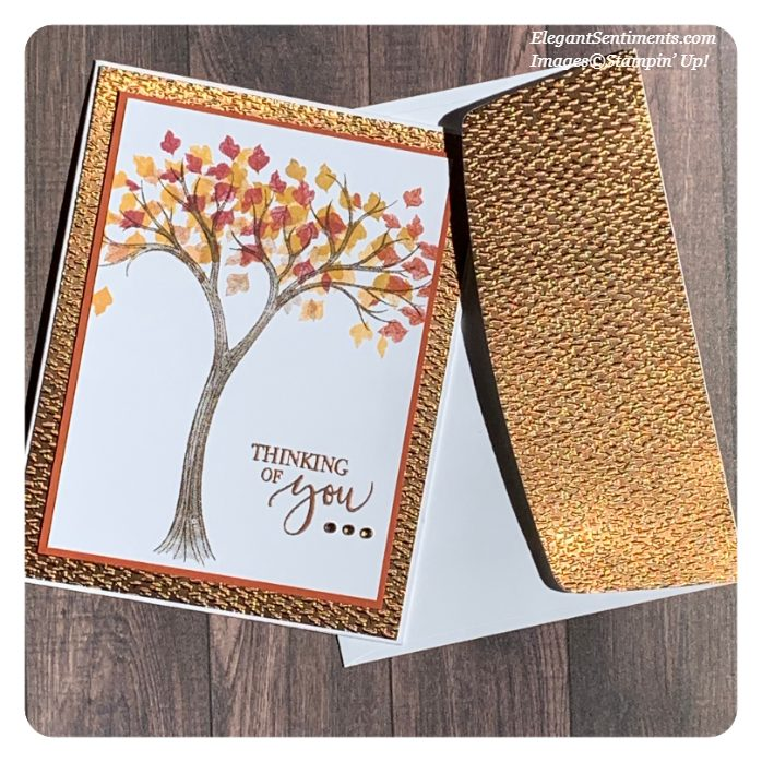 Thinking of You Card and embossed envelope made with Stampin' Up! products