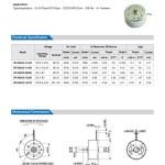 RF-300 Dc Micro Motor2
