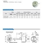 RF-310 Dc Micro Motor