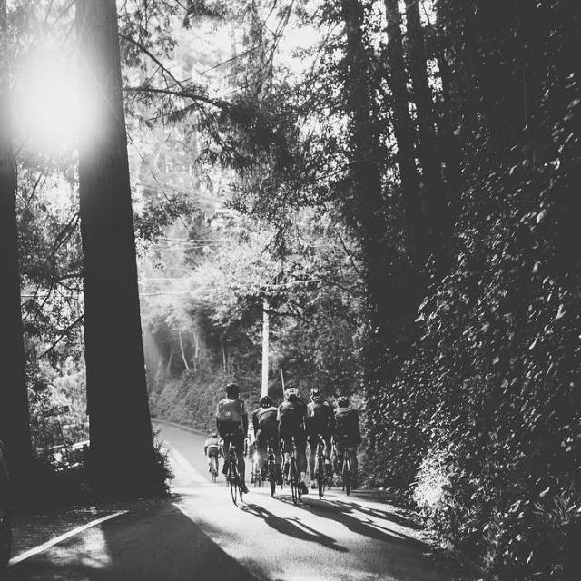 Morning Mill Valley vibes groupridechronicle