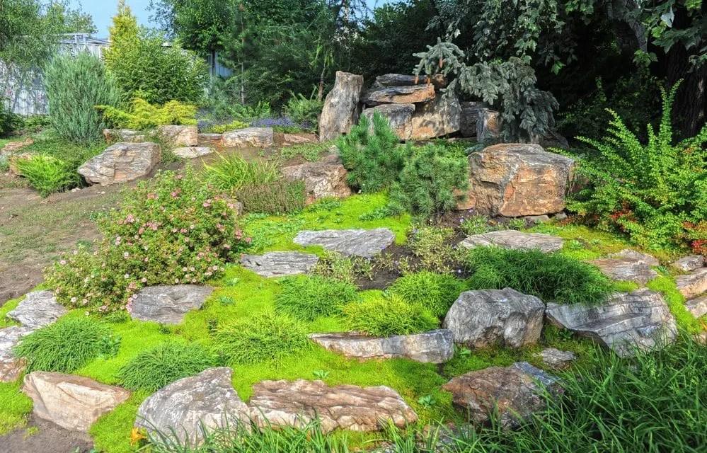 10 Low Maintenance Lawn Alternatives on Non Grass Backyard Ideas id=48446