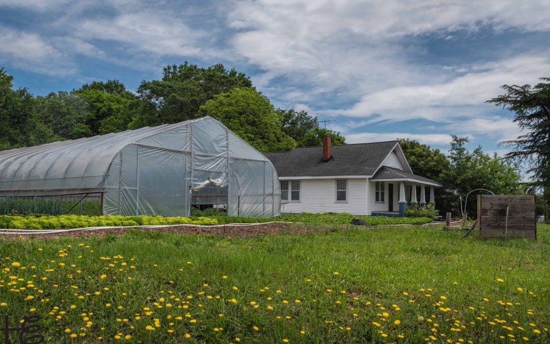 Greenville Urban Farm Tours
