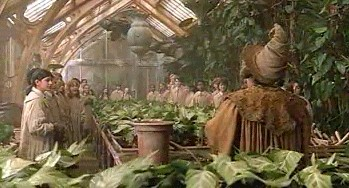 Image result for harry potter herbology plants