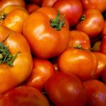 Options for Measuring Tomatoes