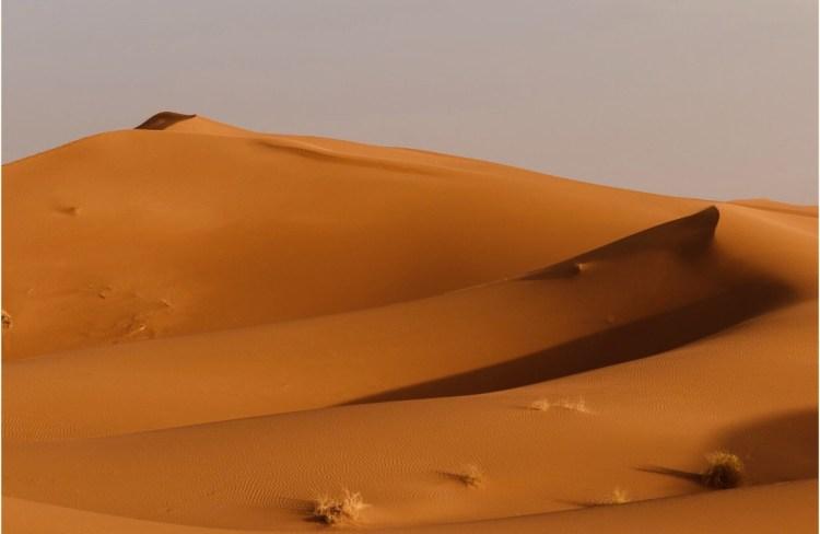 Splendido paesaggio delle dune di sabbia nel deserto del Sahara