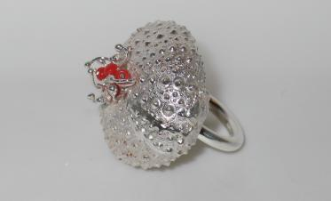 Ring in silver and coral