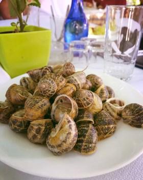 snails barbonitsa