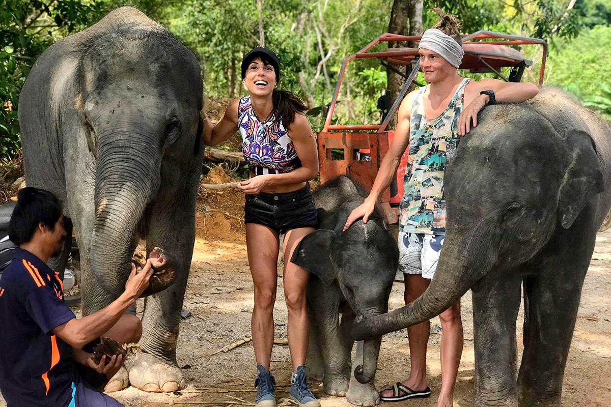 Our Elephants