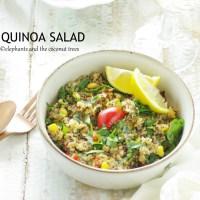 Quinoa Salad ( Zero oil recipe)