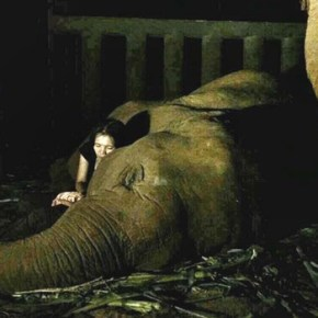 "How To Sing an Elephant to Sleep :  The ""Baby Elephant Lullaby"" & One Contented Snoring Elephant"