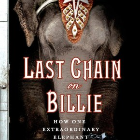 Last Chain on Billie : How One Extraordinary Elephant Escaped the Big Top by Carol Bradley : Review Part 1