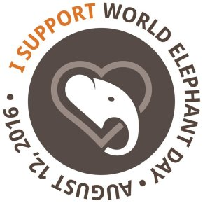 """Countdown to World Elephant Day & """"Elevents"""" Abound : Show Your Support : Think of What You Can Do To Help Elephants"""