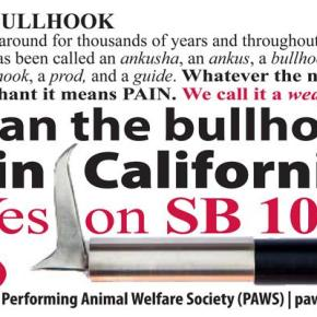 "California Awaits Governor's Approval on SB 1062 the ""Elephant Protection Bill"" Which Can Only Put Pressure on ""Rent an Elephant"" Businesses & Surely This Action Will Shut Them All Down"