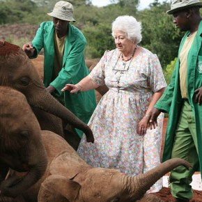 Our African Elephants Will Never Forget Your Kindness: Elephant Conservationist Dame Daphne Sheldrick Has Died, Age 83