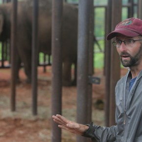 Elephant Expert Shares His Amazing Story of His Life With Captive Elephants, His Appalling Discovery of the Mistreatment of Those Elephants and His Vow to Provide Sanctuary & Healing For Captive & Performing Elephants Worldwide : Part 1